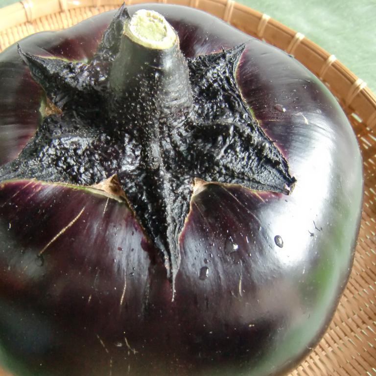 daikoku_eggplant